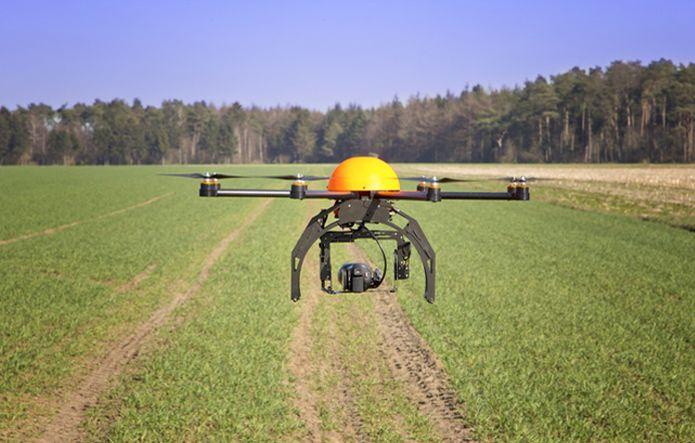 Os drones ajudam e muito no controle de qualidade de uma fazenda