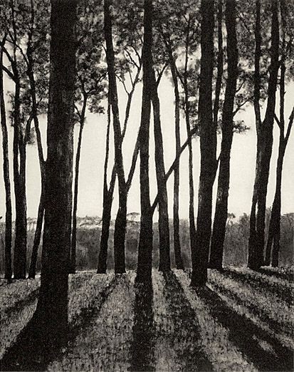 """April Gornik, """"Edge of the Forest"""" 2002, Etching on paper, Art in Context"""