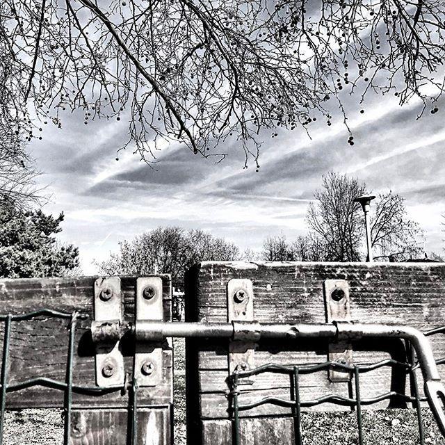 #ph #photography #photo #photographer #photooftheday #photoshoot #photogrid #photoart #streetart #streetphotography #art #arte #instaart #artoftheday #artofvisuals #instapic #picoftheday #instaphoto #instagram #instagood #travelgram #blackandwhite #sunday #goodmorning #light #dark #sunshine #music #musician #sun by (highshot.ph). goodmorning #instaart #artofvisuals #photogrid #instagood #light #sun #photo #art #photooftheday #picoftheday #instaphoto #photography #instagram #photoart #dark…