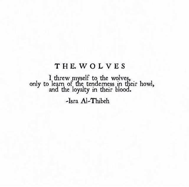 """""""I threw myself to the wolves , only to learn of the tenderness in their howl, and the loyalty in their blood"""" -Isra Al-Thibeh"""