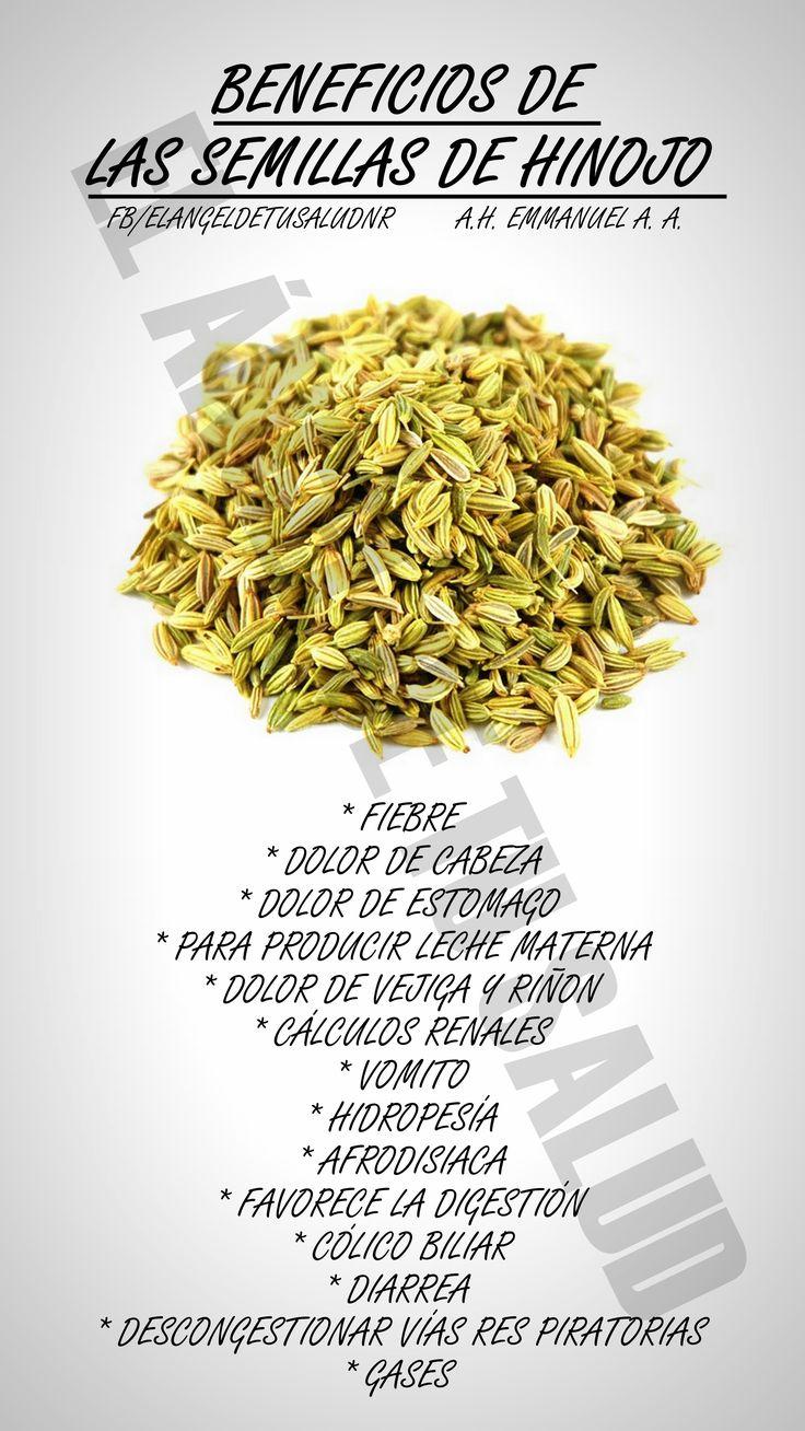El hinojo es una planta nativa de la región costera del Mediterráneo, aunque hoy en día se encuentra extendida en regiones de Asia, Europa y el norte de América.