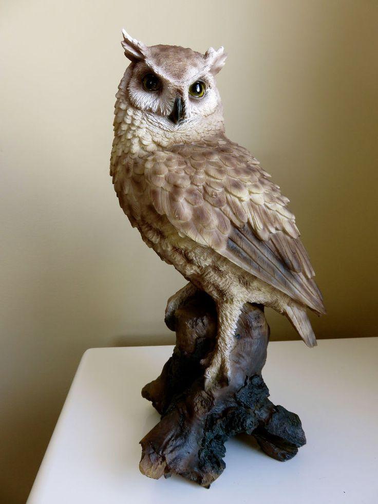 Owl55