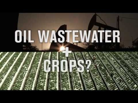 Food Shouldn't Be Grown with Toxic Oil Wastewater