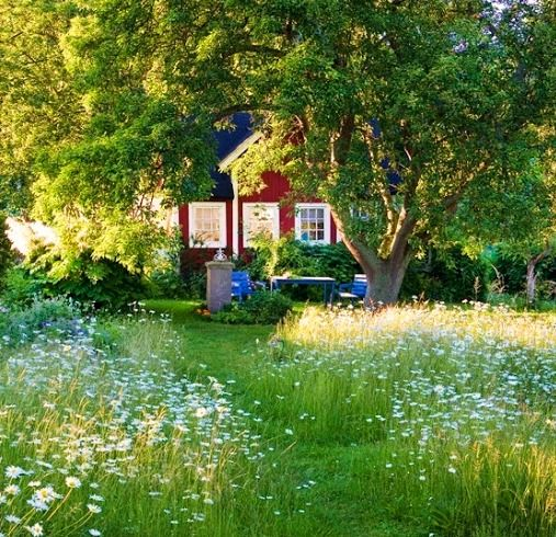 Typical Scandinavian Summer Cottage Garden