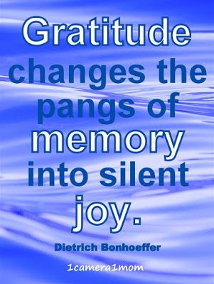 """1camera1mom: Kalk Bay Shops ~ Dietrich Bonhoeffer quote """"Gratitude changes the pangs of memory into silent joy."""" #inspirational #quote"""