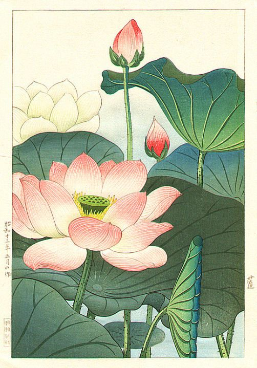 Lotus, 1938-05 - Hodo Takemura More