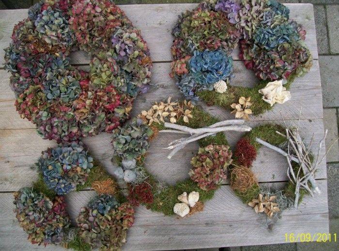 Herfstkransen gemaakt met mos hortensia's takjes  Tip;de hortensia strak om de krans binden dan droogt hij beter en mooier