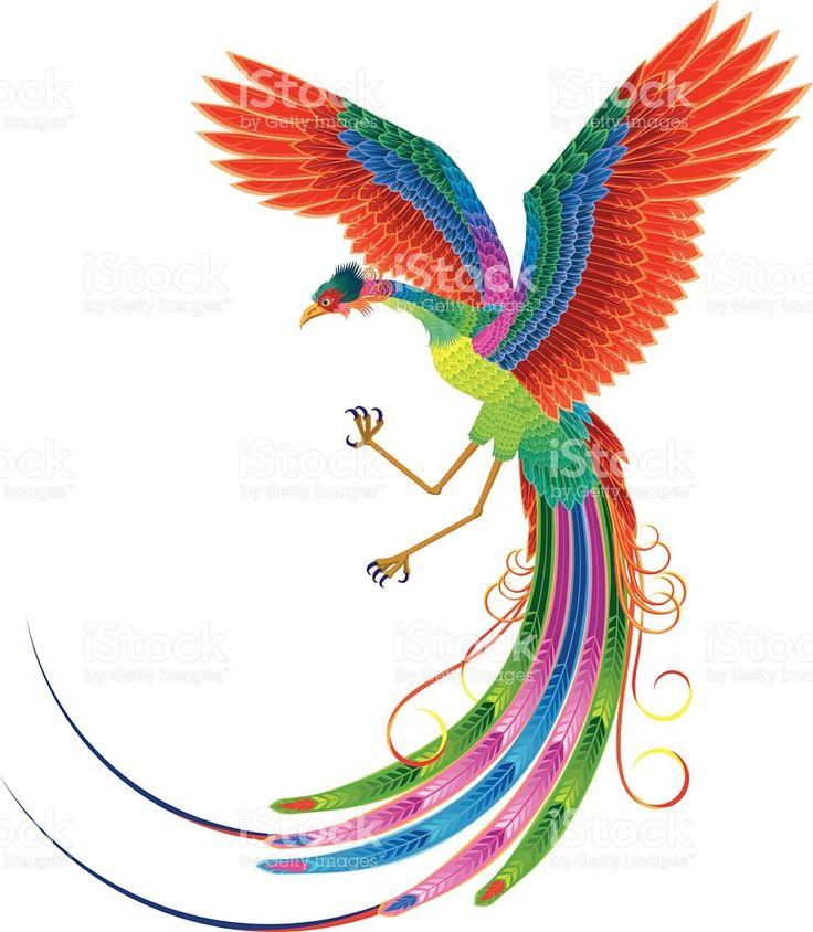 Chinese phoenix. Legend of bird royalty-free stock vector art