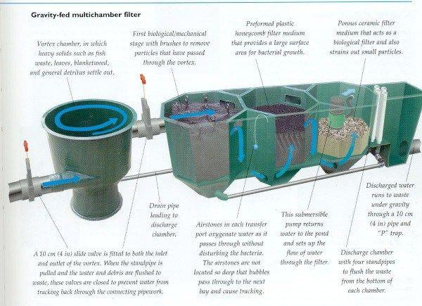 awesome koi pond filter understanding koi pond filter 2019