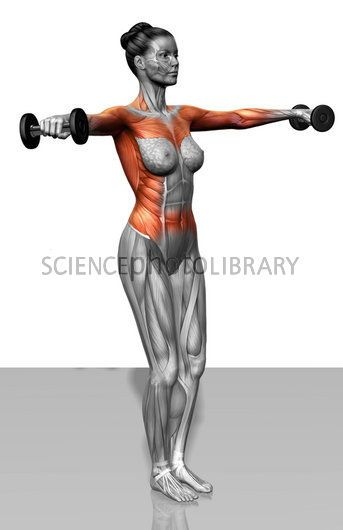Lat Raises do shoulders GOOD. Love defined arms!!!