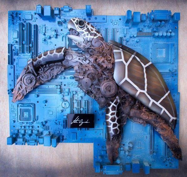 Tartaruga Marinha by Jota Azevedo