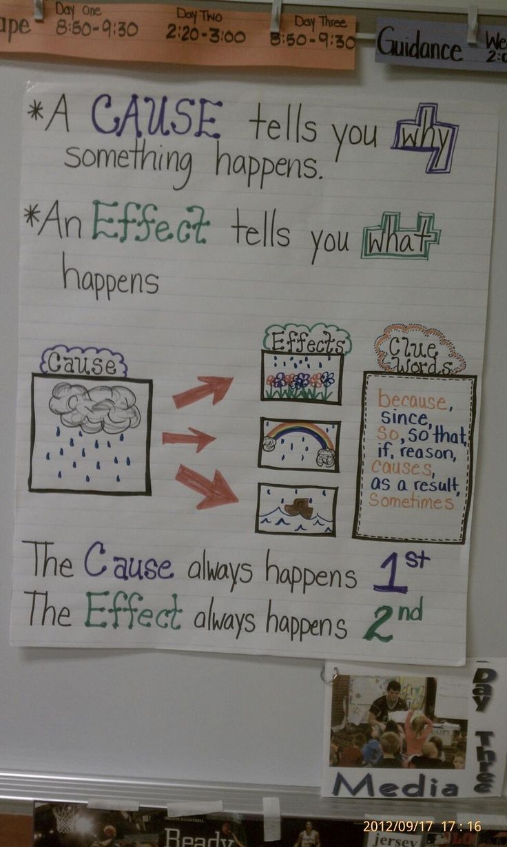 top ideas about cause and effect chart cause and cause and effect anchor chart and activities