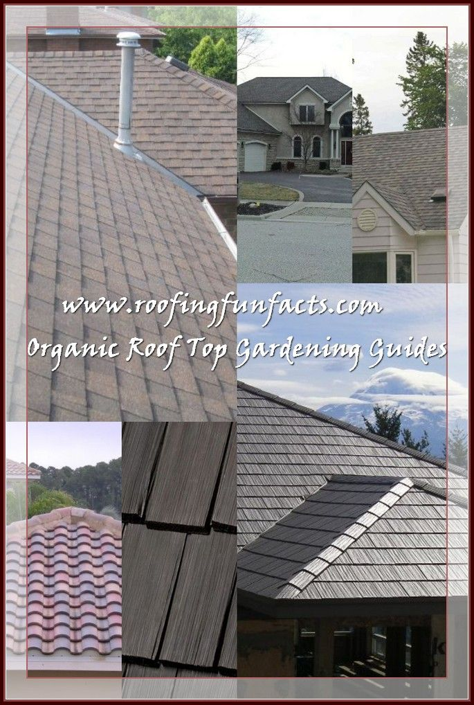 Fun Facts Of Roofing Roofing Cool Roof Leaking Roof