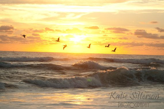 Beach Summer Sunrise with Birds, Nags Head North Carolina, Coastal Beach Decor, 8x10 Photo Art, Frame Option