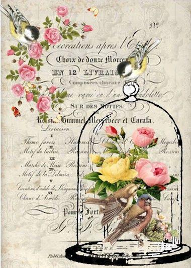 jaulitas flores y letras