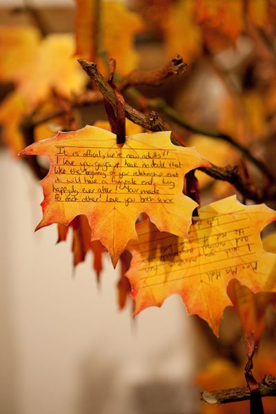 originally wedding guestbook, but would be cool for thankful tree