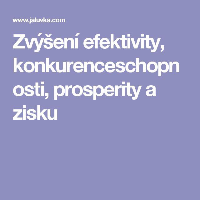 Zvýšení efektivity, konkurenceschopnosti, prosperity a zisku