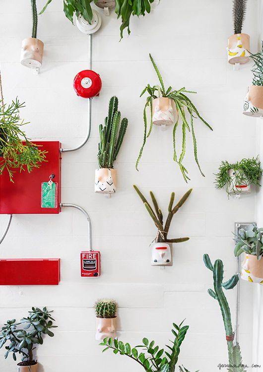 krewe du optic new orleans garance dore plants photos