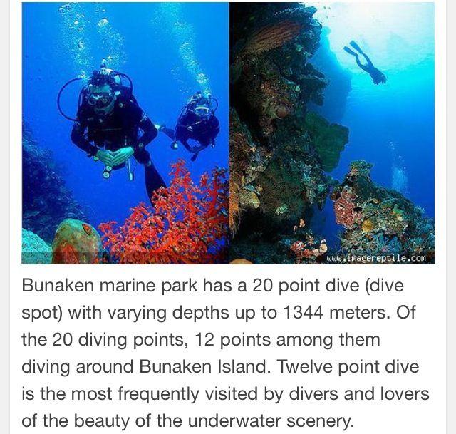 Bunaken Marine Park-North Sulawesi Indonesia.