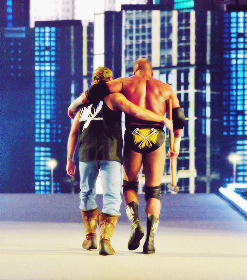 Shawn Michaels & Triple H