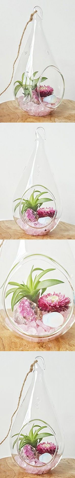"""Pink Cobaltoan Calicite and Opalite Crystal Healing Air Plant Terrarium Kit / 7.5"""" Clear Glass Hanging Terrarium, Healing Stones, and Tillandsia Plant"""