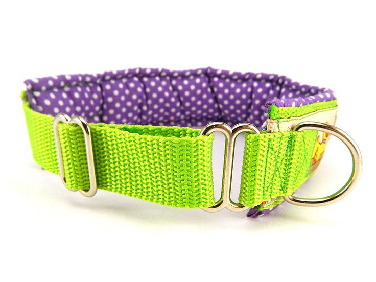 Széles nyakörv nem csak agaraknak. / Wide collar not only greyhounds. #dogcollars #greyhoundcollars #nyakörvek #nyakörv