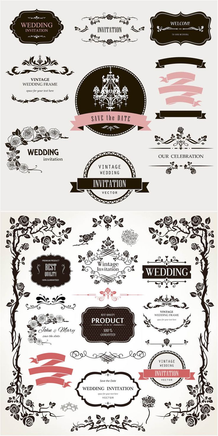 Best 25 vector vector ideas on pinterest treble clef art staff decorative floral wedding design elements vector 2 sets of vector decorative floral wedding design elements junglespirit Image collections