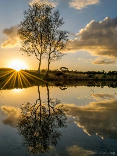 Wauw! Schitterende zonsondergang op Landgoed Heidestein :D Complimenten aan Dartie Lefering voor het maken deze super foto! (Y)
