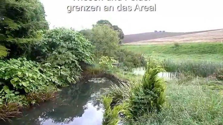 Mystische Mühle in absoluter Alleinlage