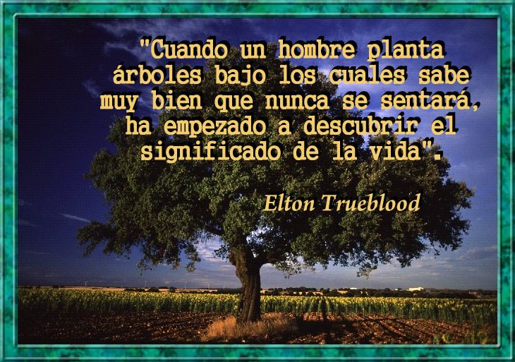 Cuando un hombre planta rboles bajo los cuales sabe muy bien que nunca se sentar ha empezado - Cuando se plantan los arboles frutales ...