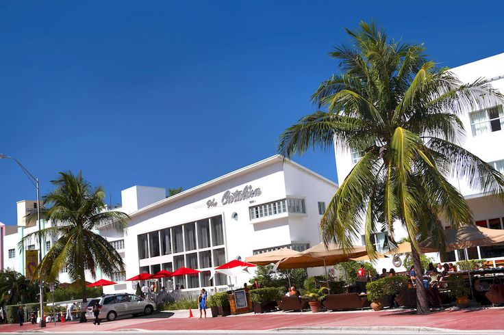 What's sophisticated, stylish, and seriously fun? The Catalina Hotel & Beach Club in #Miami!