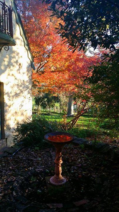 montsalvat autumn