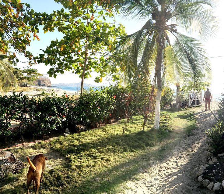 Spiaggia Penca vista dal Bar dei Villaggi Flor de Pacifico  COSTA RICA