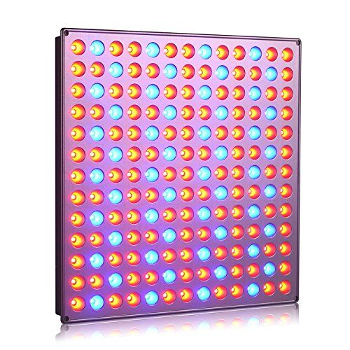 Roleadro Panel Grow Light Series,45W LED Plant Grow Light - http://freebiefresh.com/roleadro-panel-grow-light-series45w-led-review/