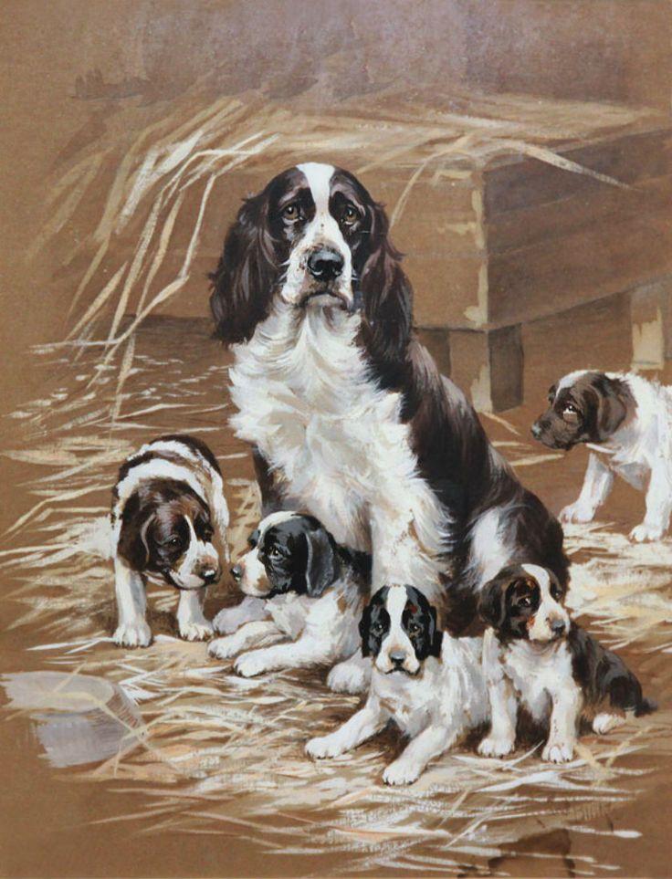 Family of English Springer Spaniels ~ Reuben Ward Binks (British 1880-1950)