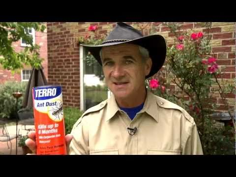 TERRO Ant Dust  - waterproof ant killer, great for getting rid of Fire Ants!  Learn more: http://terro.com/products/ant-dust  #TerroDeadAnts #LiveBugFree #Ants