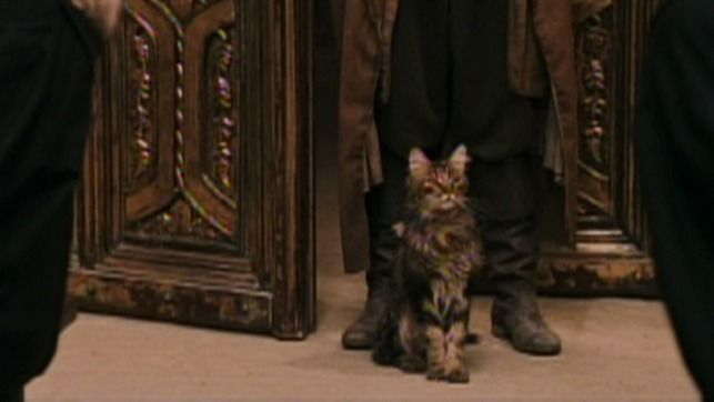The Potter S Cat