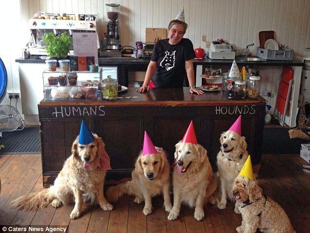 A marketing manager who was too heartbroken to leave her dog at home every day has quit her high-flying job to open up a café for dogs