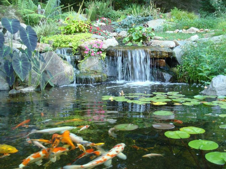 42 best water features images on pinterest water for Temporary koi pond