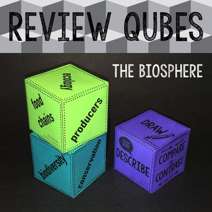 """The latest Review Qubes game for Biology is """"The Biosphere"""". This fun paper dice game provides up to 72 review questions on food chains, food webs, ecological pyramids, biogeochemical cycles, biodiversity and more!"""