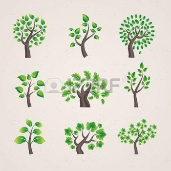 olivo arbol: árboles