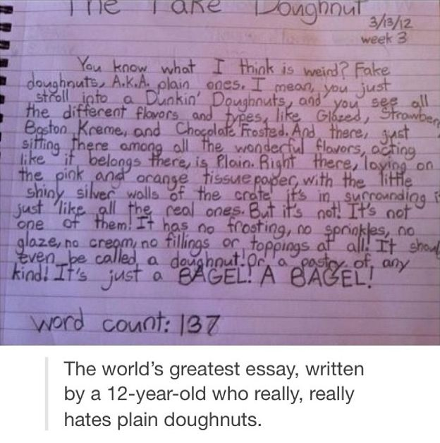 This is not an ESSAY this is a PARAGRAPH but it  39 s freaking hilarious