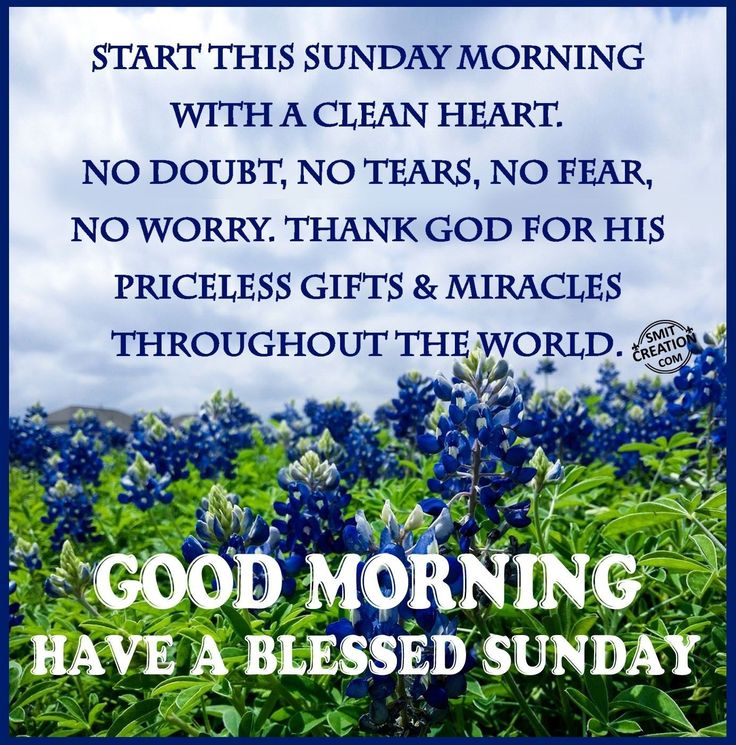 Good Morning, Have A Blessed Sunday good morning sunday sunday quotes good…