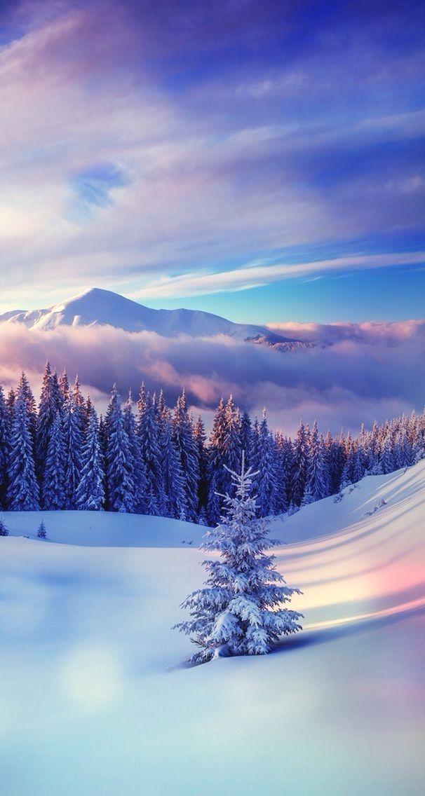 Winter Google Search Winter Pictures Winter Wallpaper Hd Winter Wallpaper