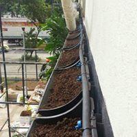 """Sistema de Irrigação Automatizada por Gotejamento """"em Jardim Vertical"""" Centro - RJ"""