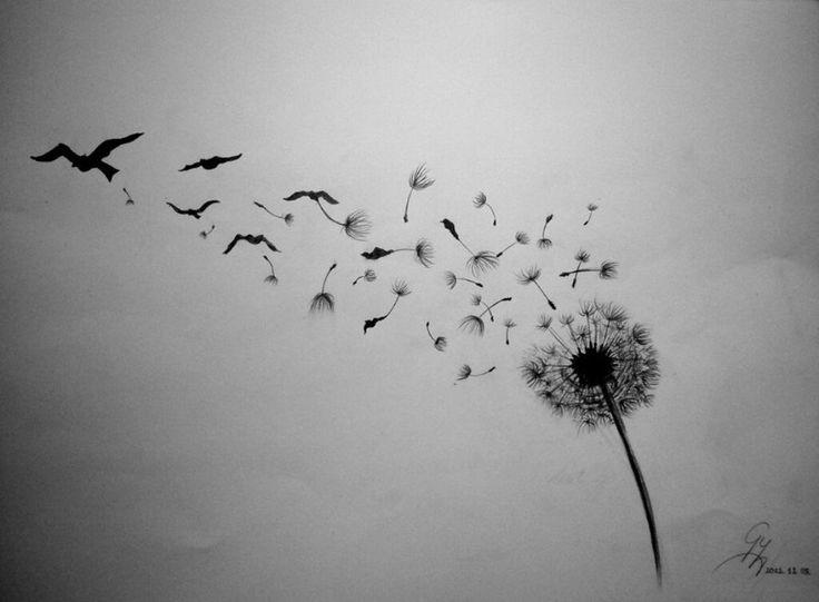 Flowers: Letting Birds Photography Sky Flower Dandelion Black ...