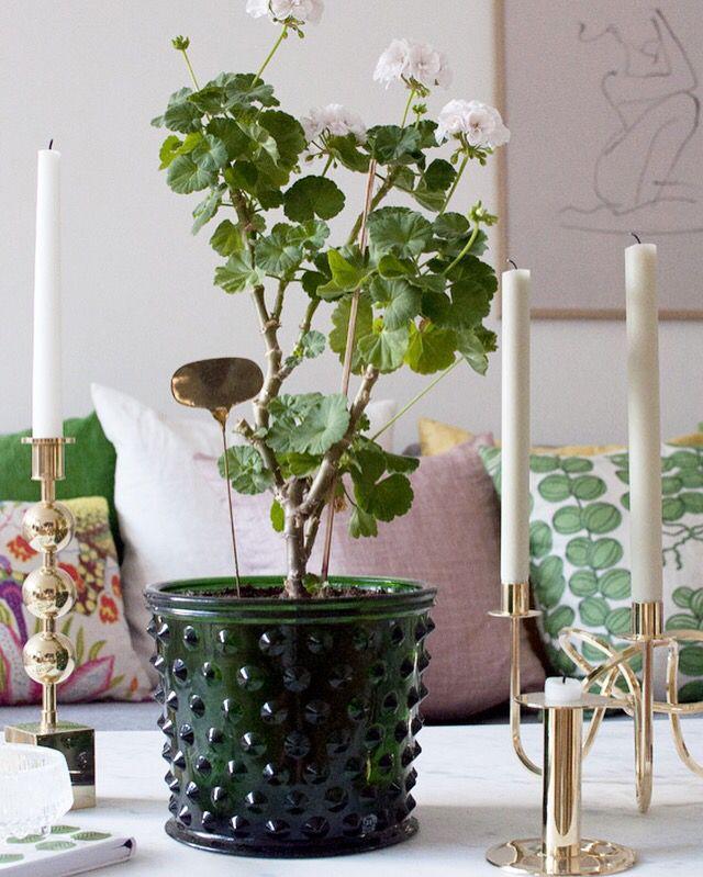 Home of debbie.nu dendardebbie svenskt tenn hortus tre kronor vänskapsknuten Mårbacka pelargon marmorbord