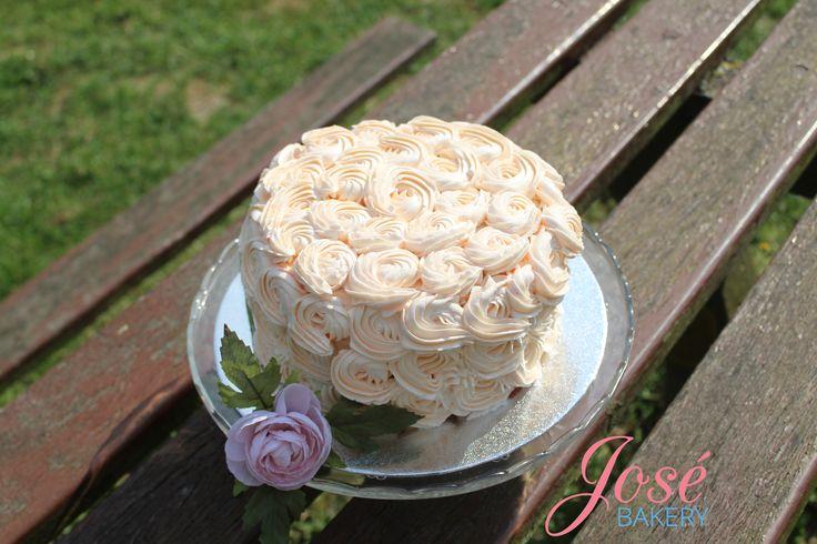 Bouw jouw droomtaart met deze rozet taart. Of het nou voor een verjaardagstaart, kindertaart of feesttaart is. Het kan allemaal! Houd je niet zo van de roosjes? Misschien is een ruffle taart dan iets voor jou? Of.... waarom niet beiden?