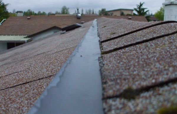 Pin On Roof Moss Removal