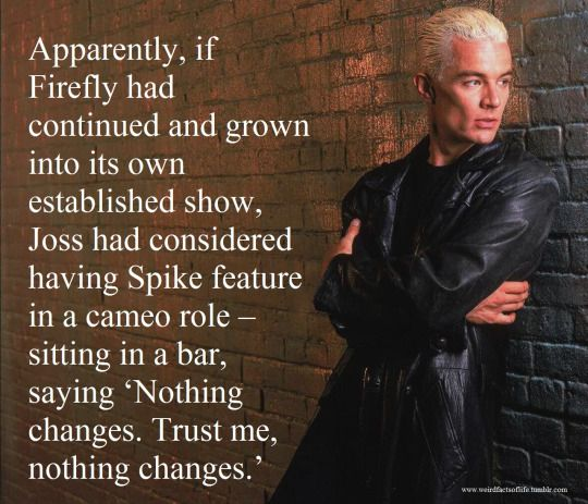 Rumor has it that Whedon would have had Spike make a cameo appearance in Firefly if the series had grown on its own. I have no idea if this is true, but it would have been AWESOME!